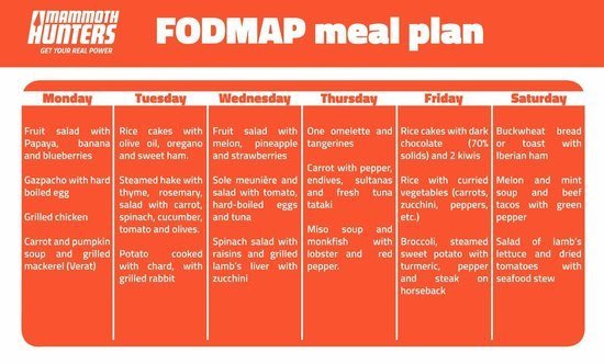 fodmap diet plan